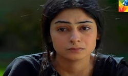 Badguman Episode 53 Promo Full by Hum Tv Aired on 1st December 2016