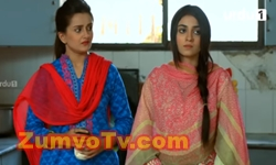 Ahsas Episode 8 Promo Full by Urdu1 Aired on 29th November 2016