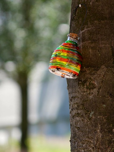 Colorfull wasp catcher #amsterdam #glass #waspcatcher #tree #bokeh