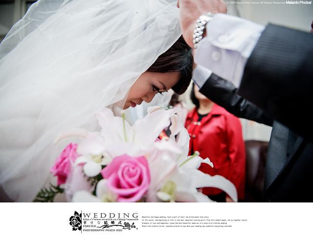 peach-20130113-wedding-9631