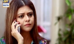 Teri Chah Mein Last Episode 18 Full by Ary Digital Aired on 23rd November 2016