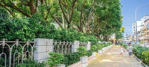 【台中】。潭子校園旁整排黃色的台灣金雨樹『台灣欒樹』│ 台中高鐵站裡的『紙龍貓奇遇記』