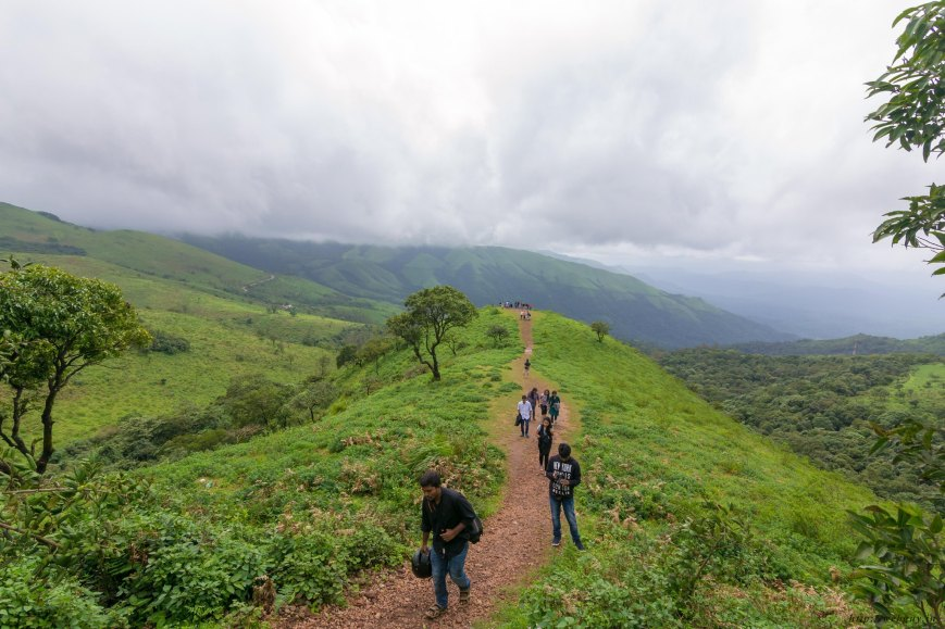 green hills and mountains chikmagalur