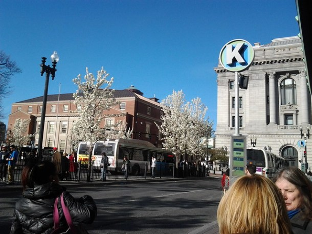 Kennedy Plaza in bloom