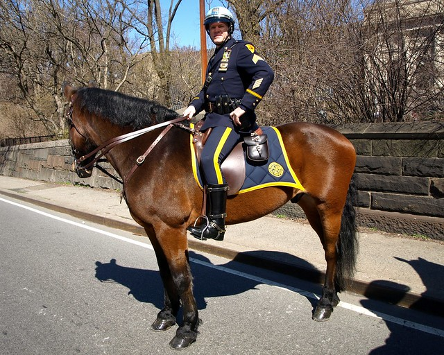 Wallpaper Hd Mu Pmu Nypd Mounted Police Officer On Horseback Central Park