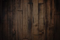 Dark Wood Paneling With Wood Floors - Wood Floors