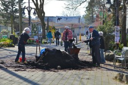 Community members pitch in to plant