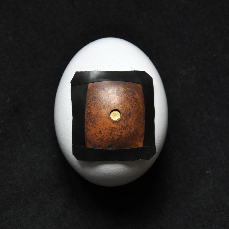 egg pinhole camera