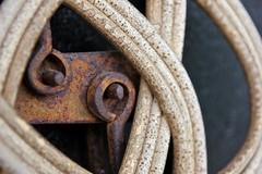 Bamboo & rust