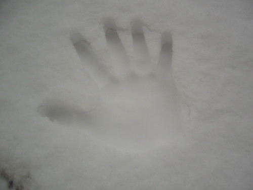 handprint in the snow