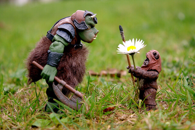Gamorrean Vs. Ewok