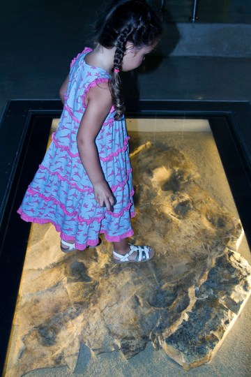 standing over fossils