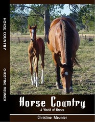 Christine Meunier's Horse Country