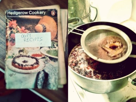 Hedgerow cookery
