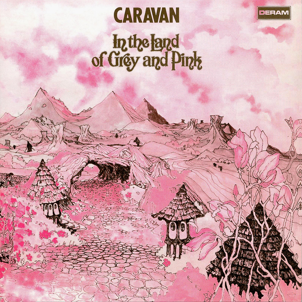 Grey And Pink In The Land Of Grey And Pink Lp Cover Art