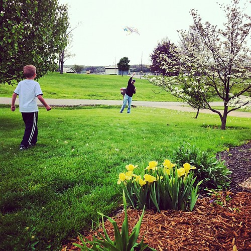 Today's post-supper adventure: kite flying.