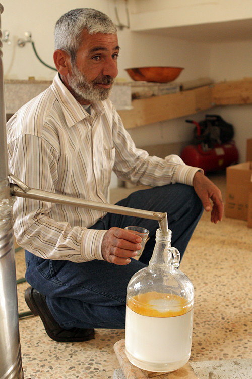 distilling za'atar water and oil