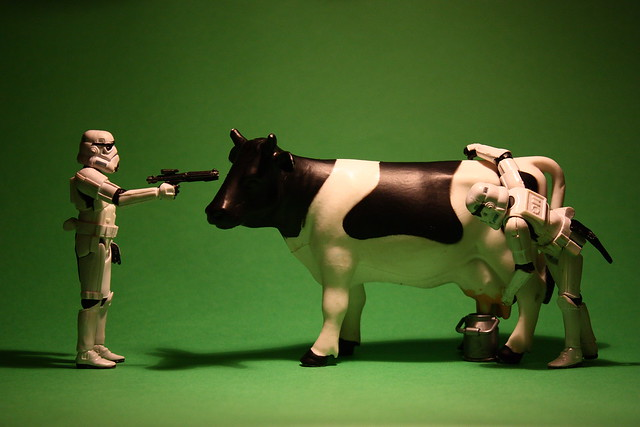 Milking the galaxy, one cow at a time