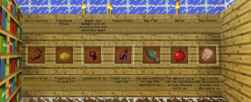 Minecraft at the Museum: Poison - Top Secret Lab of Poison Knowledge