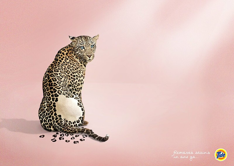 Tide - Leopard