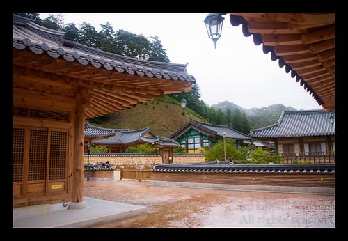 Jeongwolsa_in_the_rain