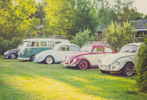 Volkswagen gettogether