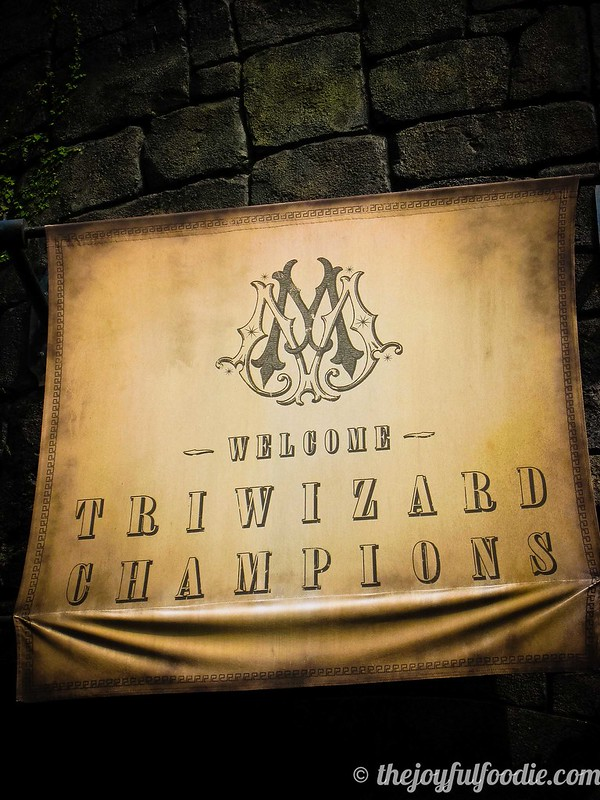 TriWizard Champions