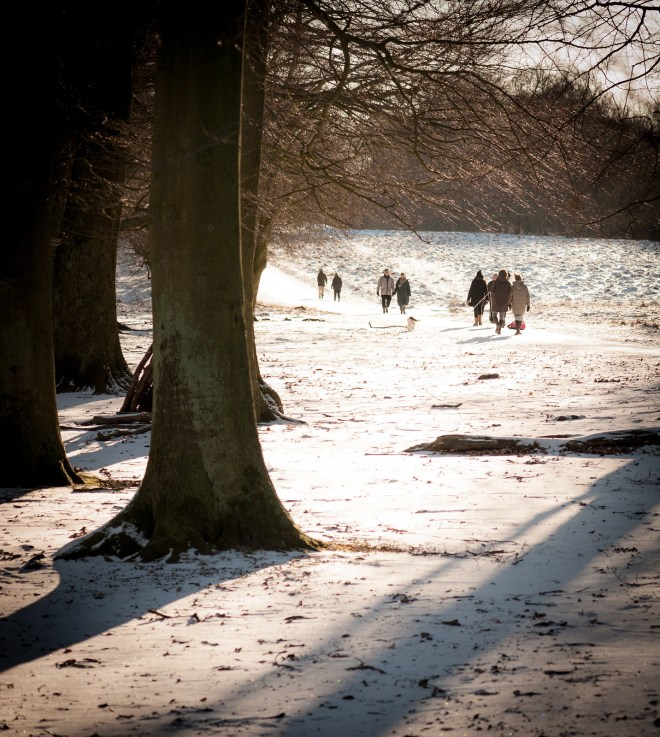 A Walk In The Winter Sun