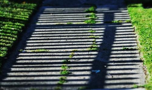 Tracks of Shadow
