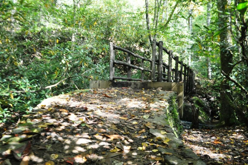 Bridge in Joyce Kilmer Memorial Forest, North Carolina, Oct. 9, 2014