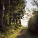 BodegaRidge-May2016-124