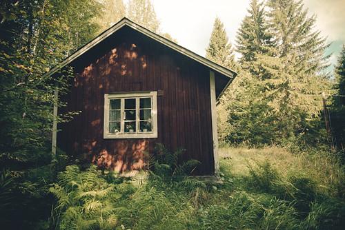 Abandoned hunting cabin
