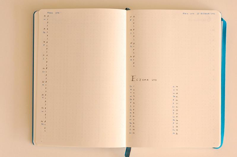 Bullet Journal Set Up November 2015 \u2014 Tiny Ray of Sunshine - blank food log