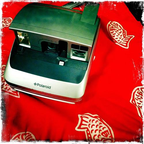 うあああ!凄く嬉しい!thanks for the Polaroid @sentence_war !