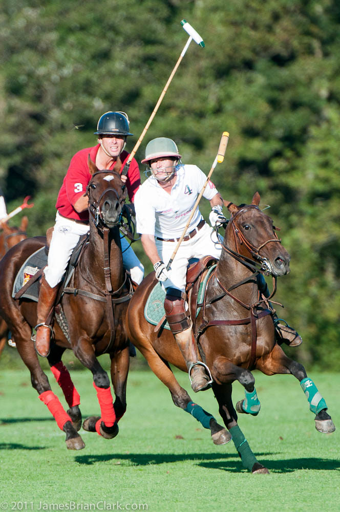 Polo, Newport, Rhode Island