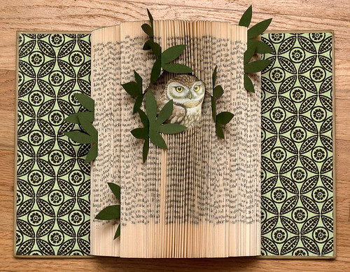 Altered Book: The Owl House & Home