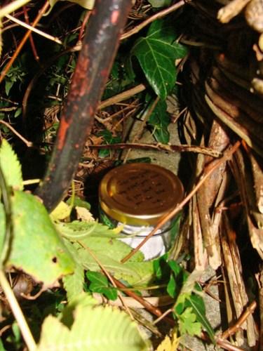 Jar No 299 in situ 01