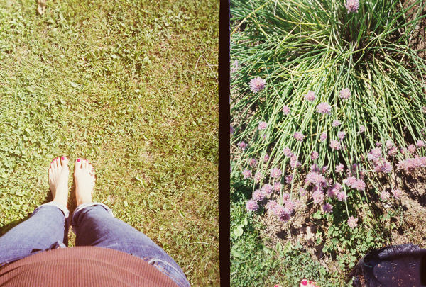 Golden Half: Toes & Flowers in the Summer