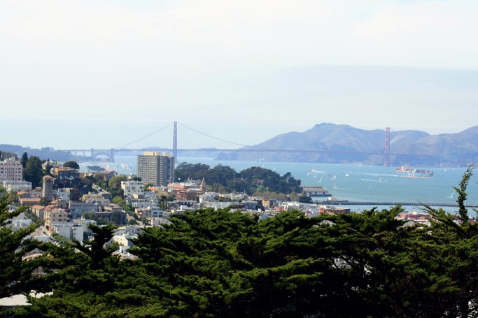 San Francisco in Review