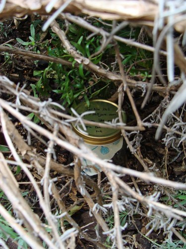 Jar No 262 in situ