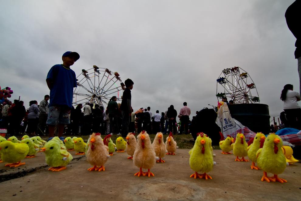 Pollitos de juguete a la venta en el Parque Bicentenario, al que asistió mucha gente el fin de semana. (Tetsu Espósito)