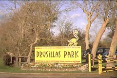 """Drusillas Zoo Park • <a style=""""font-size:0.8em;"""" href=""""http://www.flickr.com/photos/59278968@N07/6326171878/"""" target=""""_blank"""">View on Flickr</a>"""