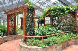wooden greenhouses for sale