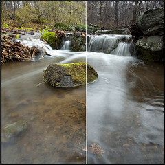 Polarizer Comparison