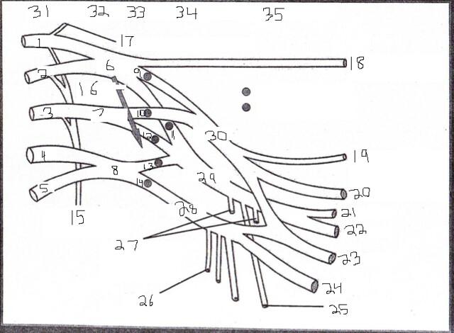 bmwcar wiring diagram page 7