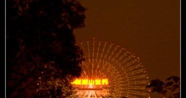旅行︱雲林古坑.2010劍湖山跨年煙火秀