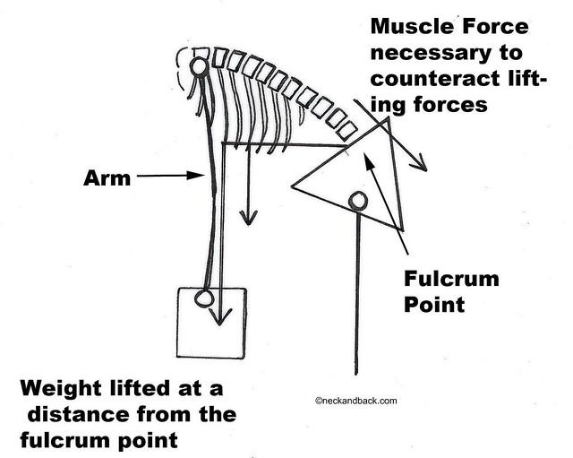 disc lumbar spine diagram of spine dr donald corenman spine