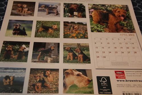 Nelson calendar