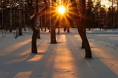Sunset / Novosibirsk / Siberia / 08.11.2012