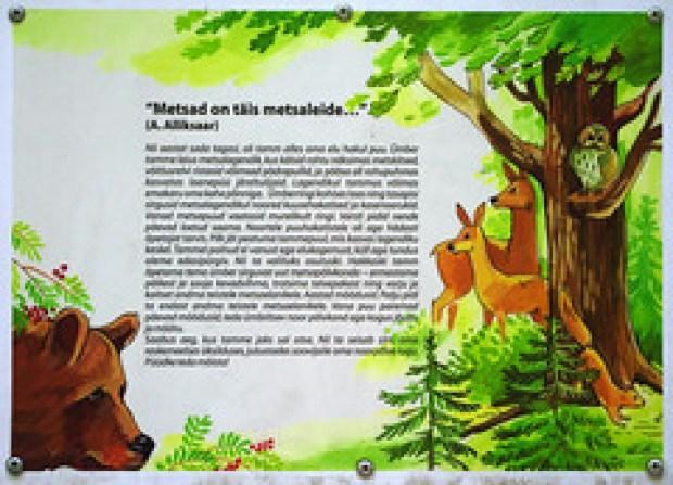 Infotahvel (Jaan Keinaste) Tags: forest estonia pentax mets eesti k7 soomaa soomaanationalpark soomaarahvuspark pentaxk7 koprarada